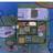 Minecraft Day「SDGs時代のみんなの家、未来のまち」(オンライン)