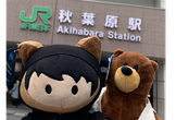 Salesforce Saturday 秋葉原 #06 オンライン&懇親会あり!