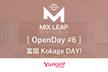Mix Leap OpenDay #6 富国 Kokage DAY!