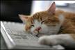 Windows.NETプログラミング勉強会 第2回