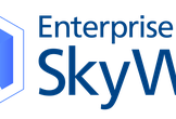 SkyWay Developer Meetup #1