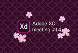 Adobe XD meeting 14