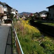 nobuaki_yamaji