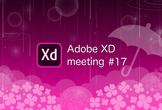 Adobe XD meeting 17