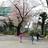 日本Androidの会秋葉原支部ロボット部 第90回勉強会
