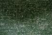 【第21回 数学カフェ】蔵本モデルと一般化スペクトル理論