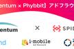 【Momentum × Phybbit】アドフラウド勉強会 第一回【増員】