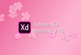 Adobe XD meeting 15