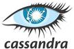 カサンドラクラスター(Cassandra Cluster)を如何に管理するか?