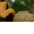 #bq_sushi 番外編 #2 BQMLハンズオン!