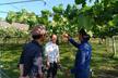 SORACOM UG 農業活用コミュニティ #1