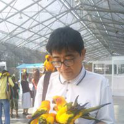 izuru_nomura