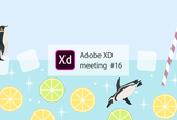 Adobe XD meeting 16