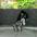 kubota_mizuki