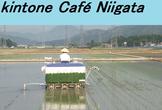 kintone Café 新潟 Vol.3