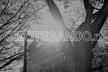 Omotesando.rb #55 〜 コードの書き方 〜