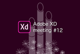 Adobe XD meeting #12